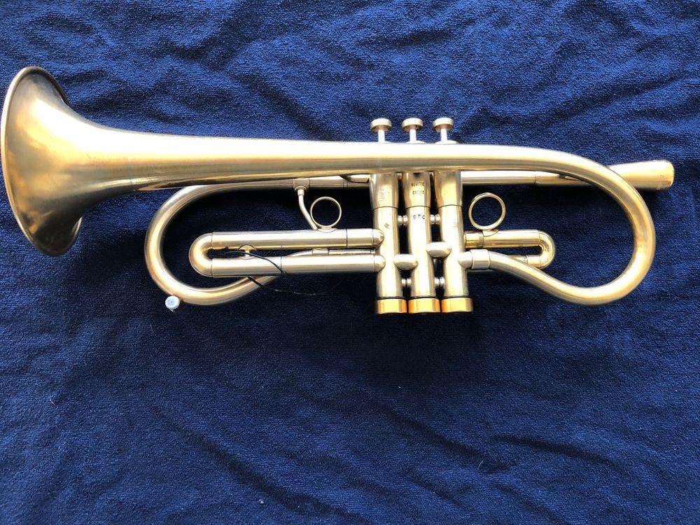 Trompette Monette type Flumpet  6500 Wimereux (62)
